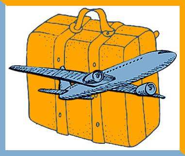 Багаж и ручная кладь в самолет