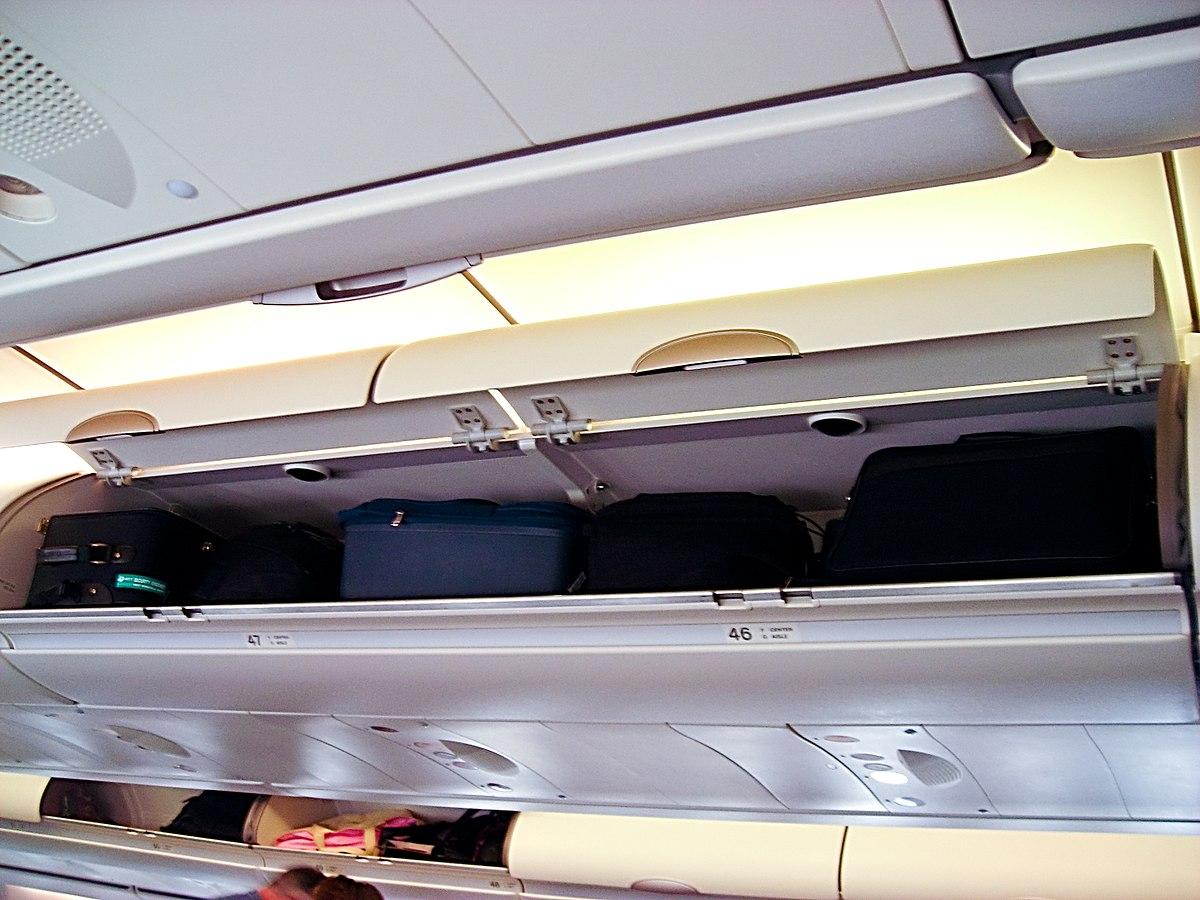 Багаж на полке самолета