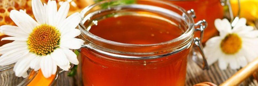 Мед в ручной клади и багаже: можно ли?